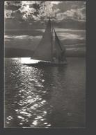 Zurich - Sent - Segelboot / Voilier / Siling Boat - See - 1956 - ZH Zurich