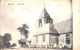 Beersel - L'Eglise (Edit. Van Den Bosch) - Beersel