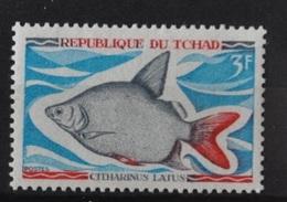 Citharinus Latus (Poisson) - Tchad - 1969 - Chad (1960-...)