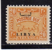 LIBIA LIBYA 1951 REGNO INDIPENDENTE CIRENAICA CYRENAICA SEGNATASSE POSTAGE DUE TASSE 20m MNH - Libya
