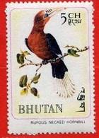 Rufous Necked Hornbill / Calao à Cou Roux (Oiseau) - Bhoutan - 1968 - Bhoutan