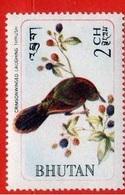 Crimsonwinged Laughing Thrust / Garrulaxe élégant (Oiseau) - Bhoutan - 1968 - Bhoutan