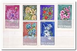 Roemenië 1974, Postfris MNH, Flowers - 1948-.... Republics