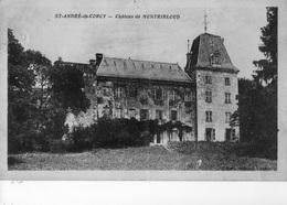 St André - De - Corcy  - Château De Montribloud - - Autres Communes