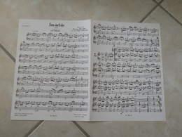 Javachic & Varionette (Musique M. Boudet,JM. Torchy & B. Hembert)(Paroles)- Partition Accordéon - Instruments à Vent