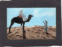 86663    Africa,   Dans Le Grand  Desert,  NV - Unclassified