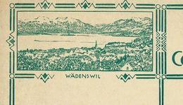 Carte Illustré Neuve N° 115 - 016  WÄDENSWIL    (Zumstein 2009) - Entiers Postaux