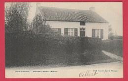 Bois-d'Haine - Maison Louise Lateau - 1905 ( Voir Verso ) - Manage