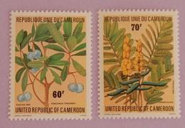 "CAMEROUN YT 679/680 NEUFS(**) ""PLANTES MÉDICINALES ""ANNÉE 1981 - Cameroon (1960-...)"
