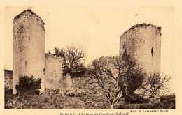 79 -ECHIRE -CHÂTEAU DU COUDRAY SALBART - Sonstige Gemeinden
