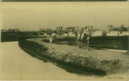 EGYPT - VIEW OF A VILLAGE - EDIT L.C. -  1910s (BG3495) - Cairo
