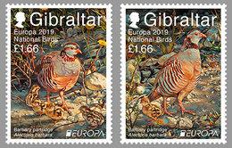 """GIBRALTAR 2019 - EUROPA 2019 - -""""AVES - BIRDS/WILDLIFE - VÖGEL - OISEAUX""""- BARBARY PARTRIDGE  - SET Of 2 Stamps - 2019"""