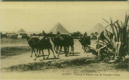 EGYPT - CARAVAN OF BEDOUINS NEAR THE PYRAMIDS OF GIZA - EDIT L.C. -  1910s (BG3500) - Cairo
