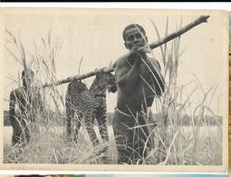 CONGO BELGE Pub Biomarine,  Avec Timbres - Belgian Congo - Other