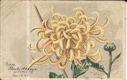 JAPAN Chrysanthemum (Publisher Unknown) 1905 Used - Japan