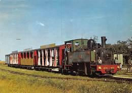 PIE.LOT T-19-5186 : MUSEE DES TRANSPORTS DE PITHIVIERS.  CHEMIN DE FER. LE TORTILLARD AU TERMINUS DE BELLEBAT - Trains