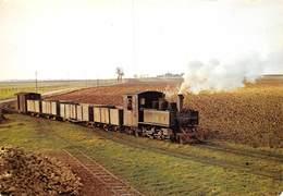 PIE.LOT T-19-5187 : MUSEE DES TRANSPORTS DE PITHIVIERS.  UN TRAIN DE BETTERAVES DANS LA CAMPAGNE BEAUCERONNE. - Trains