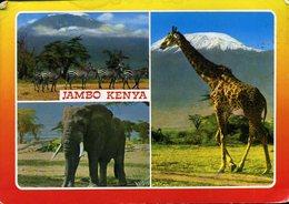 CPM - Vues Diverses De La Faune - Kenya