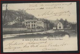 Postkaart Van Vallée De La Meuse - BOUVIGNES - Vue Sur Creve Coeur  Zegel Nr. 58 Stempel WAULSORT ; Staat Zie 2 Scans ! - 1893-1900 Fine Barbe