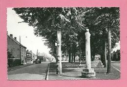 C.P. Berendrecht  =  Solftplaats  Met Berenpaal - Antwerpen