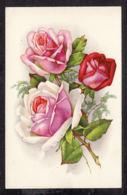 93454/ FLEURS, Illustration, Roses - Bloemen