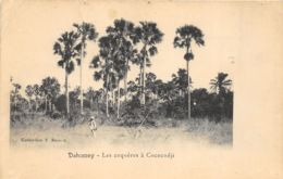 Dahomey - Les Coquères à Cococodji - Dahomey