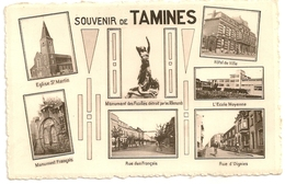 Souvenir De TAMINES. Carte Multivue. - Sambreville