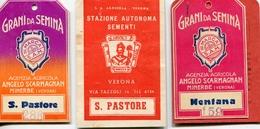 """PUBBLICITA'_ADVERTISING_REKLAM-ETICHETTA Di CARTONE  """"GRANI Da SEMINA""""ANGELO SCARMIGNAN MINERBE (VR)-Original 100% /AN3- - Advertising"""