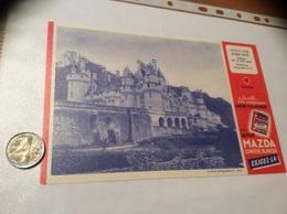 Buvard *x «LA PILE MAZDA - N°17 RIGNY-USSÉ Château Indre-et-Loire» - Electricité & Gaz