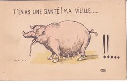 """CP - T""""en As Une Santé Ma Vieille........... - Humour"""