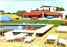 CPM - Niamey : Auberge Des Roniers - Niger