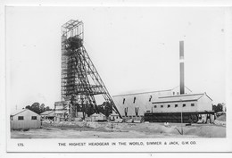 Gold Mine - Simmer & Jack - Highest Headgear In The World - Plain Back - South Africa