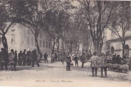 MILLAU -PLACE DE L'HOTEL -DIEU - Millau