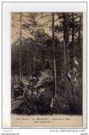 ARCACHON - Excursion En Voiture Dans La Vieille Forêt - Très Bon état - Arcachon