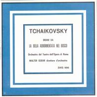 TCHAIKOVSKI LA BELLA ADDORMENTATA NEL BOSCO - Classica
