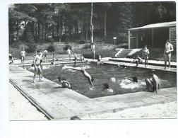 Rotselaar Volkswerk Voor Openlucht Zwemkommen ( Plongeur - Natation ) - Rotselaar