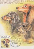 Carte  Maximum  1er  Jour    MONACO    Chien :   Le  Teckel    1988 - Maximum Cards