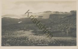 Norge - Hardangerjöklen  [4A-0.437 - Norway