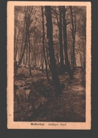 Mullerthal - Bölleger Bach - 1927 - Muellerthal