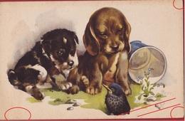 Hond Chien Dog Dogs Playing Illustrateur ILLUSTRATOR EDE SPREEUW SPARROW BIRD VOGEL OISEAU Fantaisie Fantasie Kaart - Chiens