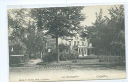 Kapellen Cappelen Les Chataigniers Hoelen No 3428 - Kapellen