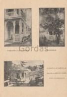 Romania - Tusnad - Filegorie - Casuta Buretele - Jud. Harghita - Romania