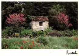CPM - Photo ALESSANDRI - Provence - St Hyppolyte Le Graveyron - Cabanon Fleuri - Edition Images & Lumières / N°89-172 - Illustrateurs & Photographes
