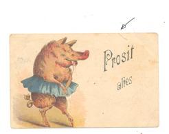 """FANTAISIE - Cochon En Tutu, Danseuse """" Prosit Altes """"  1898 - Cachet Hopfenblüthe Berlin - Marcophilie (b252) - Animaux Habillés"""