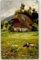 52695340 - Schwarzwaldhaus, Ziege - Illustrators & Photographers