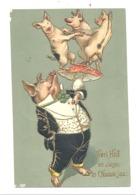 """FANTAISIE - Cochon En Serveur Avec 3 Autres Petits Cochons """" Nieuwe Jaar  """"  1908 - Carte Structurée Avec Dorures(b252) - Animaux Habillés"""