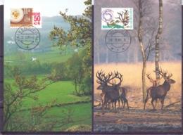 Nederland - Maximimkaarten - Michel 1264/65 - 26/11/85  (RM14539) - Holidays & Tourism