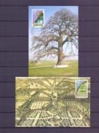 Nederland - Maximumkaarrten - Michel 1292/93- Apeldoorn 13/5/86  (RM14549) - Protection De L'environnement & Climat