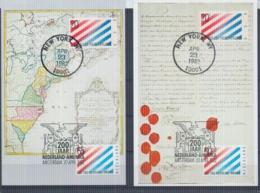 Nederland  - Maximumkaarten - Michel 1207/08  -  New York 23/4/82   (RM14659) - Géographie