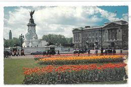 Inghilterra England London Buckingham Palace Viaggiata 1965 Condizioni Come Da Scansione - Buckingham Palace